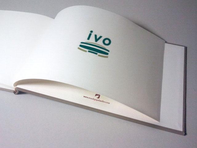 IVO-Muestra-posicion-logo