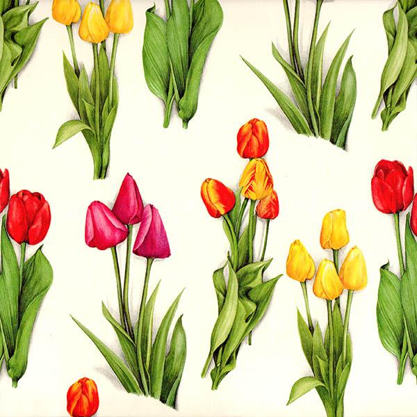 11.Tulipanes