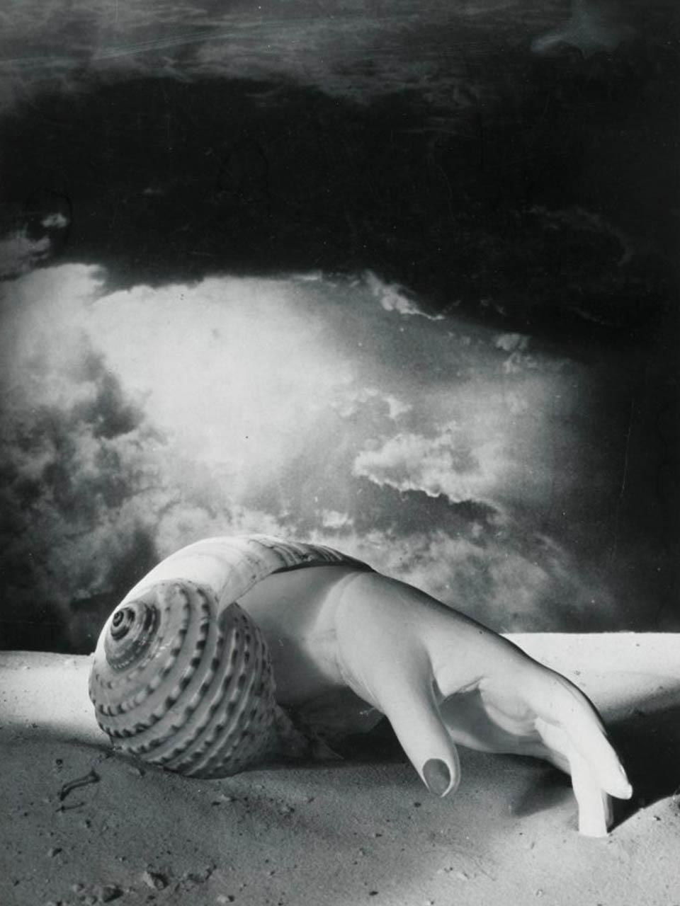 Dora Maar<br> Main-coquillage. 1934